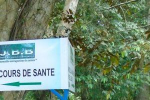 Bingerville c te d ivoire le jardin botanique n attend for Bingerville jardin botanique
